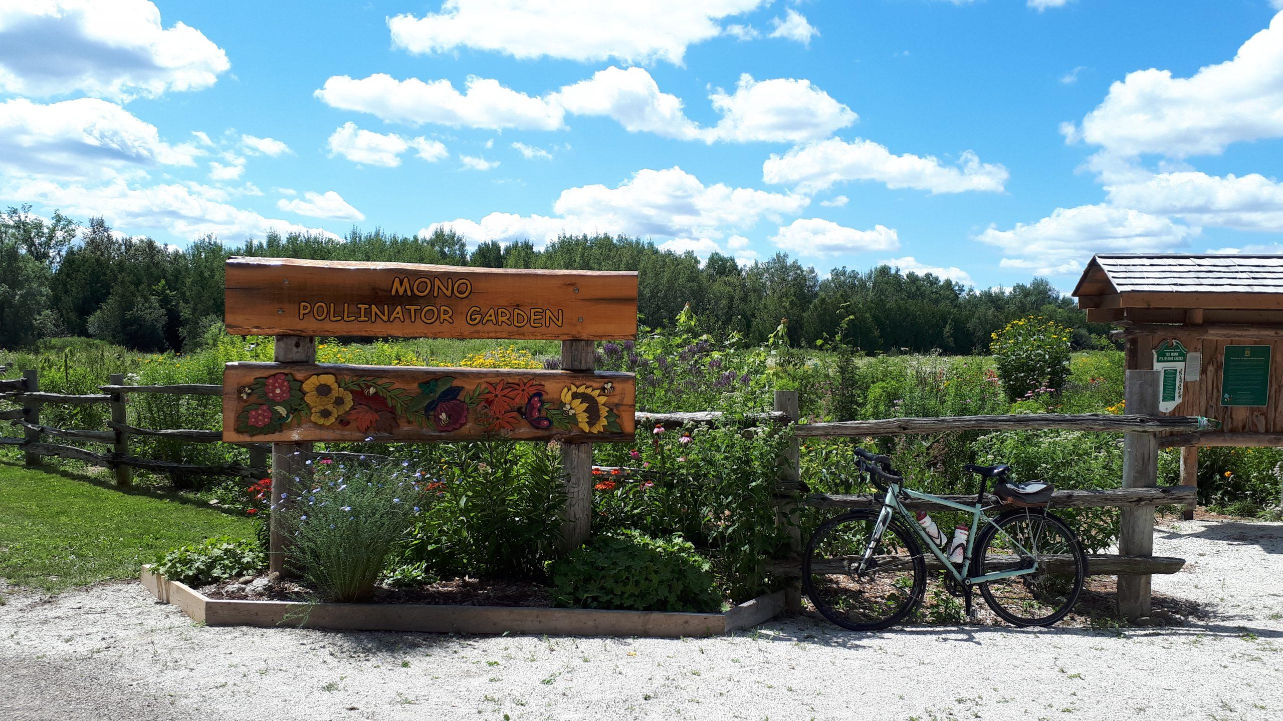Mono Pollinator Gardens near Orangeville